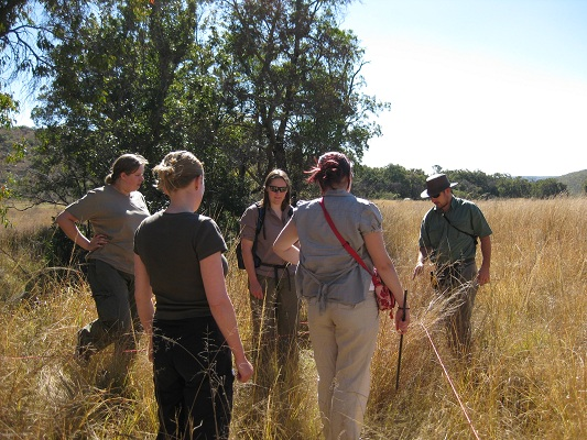 A group of volunteers setting out habitat assessment squares