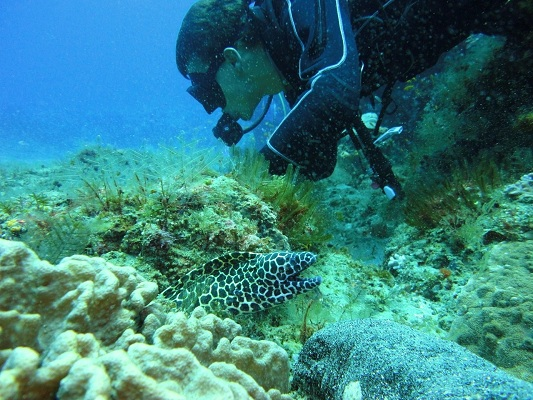 Learn about coral reef ecology whilst enjoying some of the best diving in the world