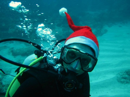 The volunteer coordinator celebrates Christmas underwater